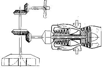 img29 (1)